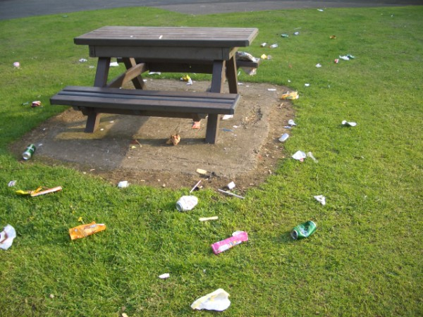 essay on littering at school
